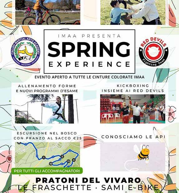 IMAA_spring_experience_2021